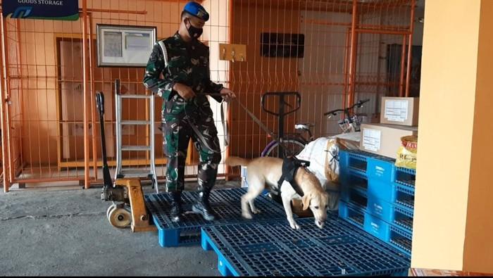 Brigadir anjing diturunkan untuk sisir bandara Adi Soemarmo, Boyolali pascaledakan bom Makassar. Foto dok tim bandara.