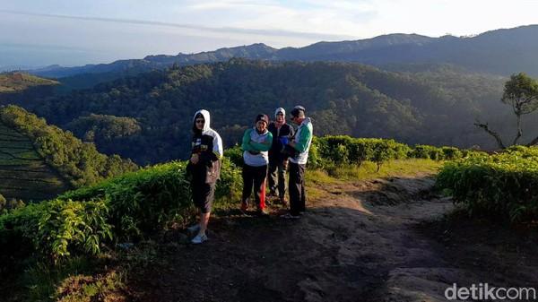 Puncak Sakub merupakan titik tertinggi di kawasan kebun teh Kaligua. Hawanya cukup dingin dan panoramanya begitu menawan. (Imam Suripto/detikcom)