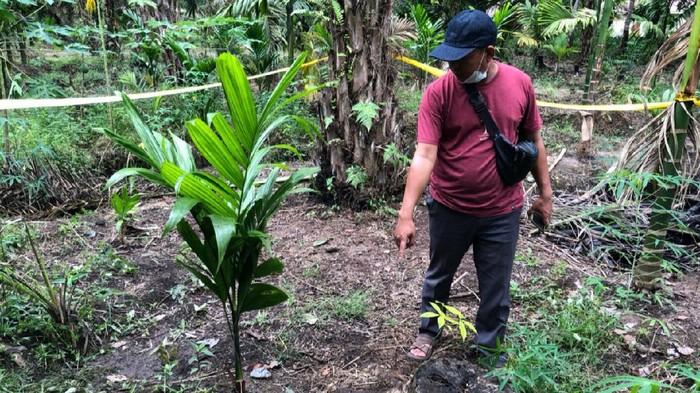 Wanita di Riau Dibunuh