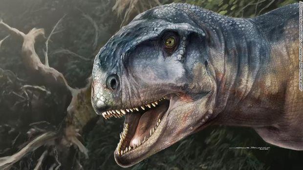 Ahli Palentologi Temukan Kerangka Dinosaurus Langka