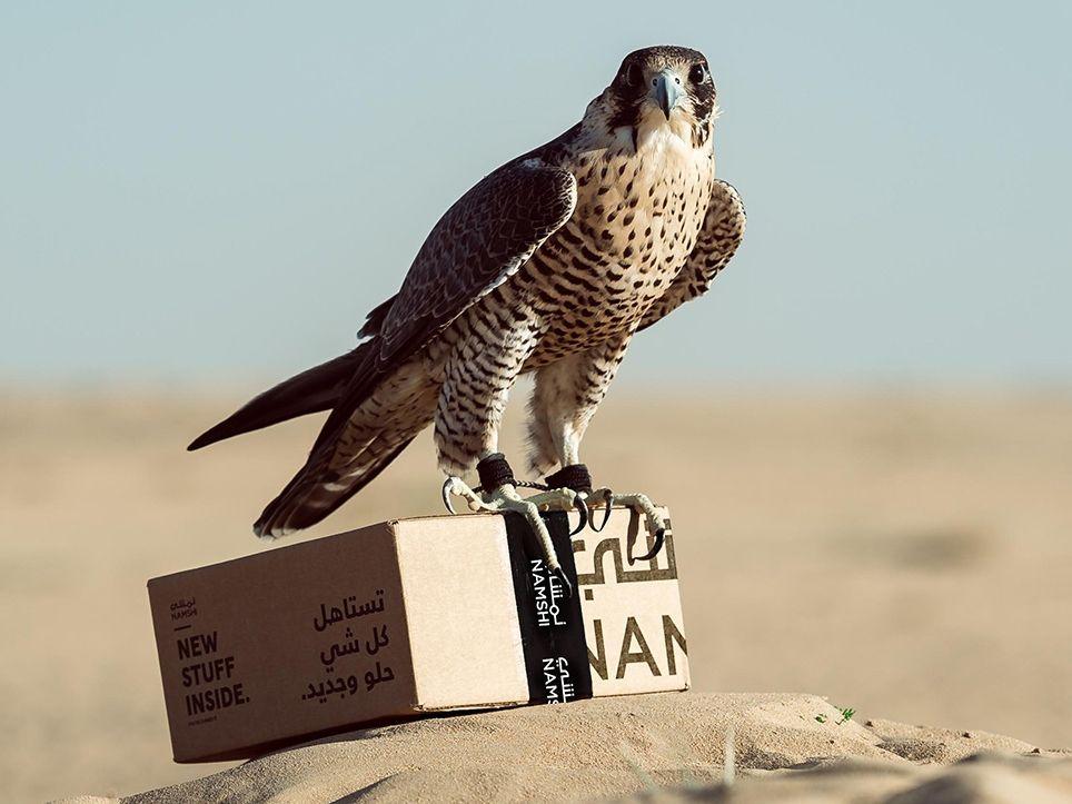 Express delivery pakai burung elangPlatform belanja online Namshi mengumumkan pada tahun 2019 bahwa mereka meluncurkan pengiriman Falcon Express, layanan baru yang didukung oleh elang.