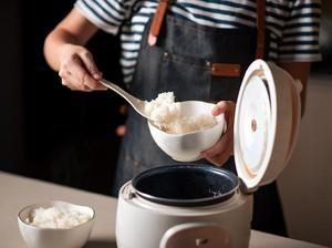 Pria Indonesia Bikin Heboh Nikahi Rice Cooker, Viral Sampai ke Malaysia