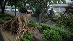 Diterjang Angin Kencang, Pohon Tumbang di Gowa