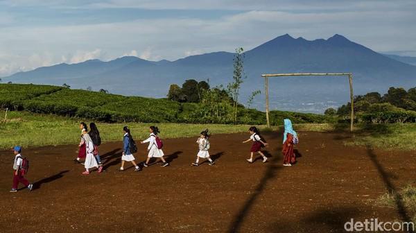 Sejumlah anak sekolah menyeberangi hamparan kebun teh untuk ke sekolah di desa Tugu Utara, Kab Bogor, Jawa Barat, Senin (29/3/2021).