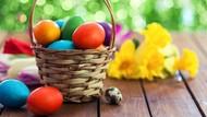 Berapa Lama Telur Paskah Bisa Disimpan dan Aman Dikonsumsi?