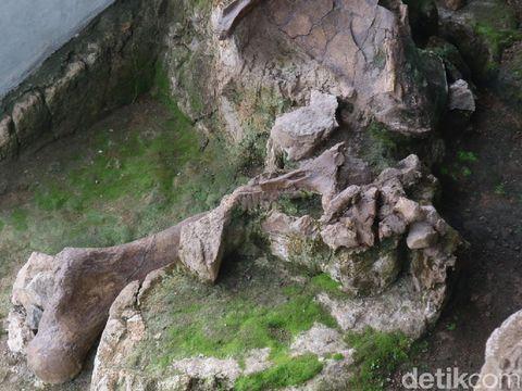 Gardu Atraksi Perlindungan Fosil yang berada di Bukit Patiayam Desa Terban Kecamatan Jekulo, Kudus, Jumat (2/4/2021).