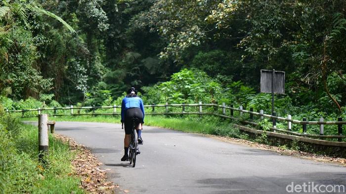Pesepeda menikmati setiap kayuhan saat menanjak di tengah kesejukan Taman Wisata Alam (TWA) Tangkuban Parahu, Bandung Barat, akhir pekan kemarin. Gradient jalan yang mencapai 14 persen tidak menyurutkan putaran roda menuju puncaknya di Kawah Ratu. Simak perjuangan mereka.
