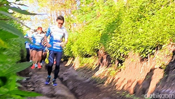 Para pelari memulai perjalanan di puncak Dinding Kaldera Megasari, Ijen, Kabupaten Bondowoso dan finish di Banyuwangi.