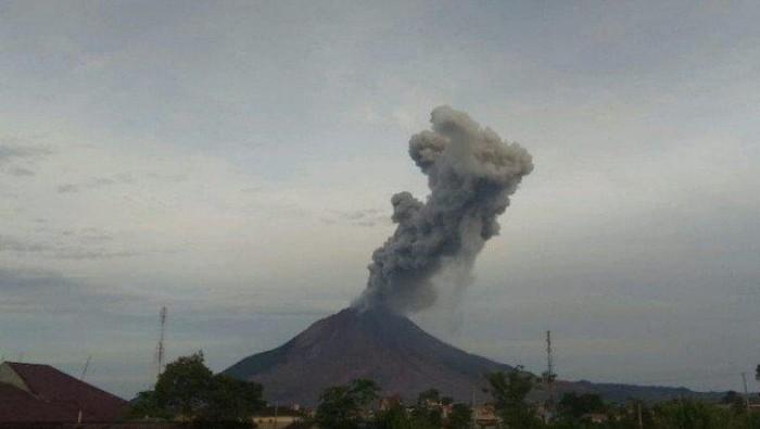 Gunung Sinabung di Kabupaten Karo, Provinsi Sumatera Utara mengalami erupsi pada Minggu dengan tinggi kolom abu vulkanik teramati 2.000 meter dari atas puncak gunung.  (ANTARA/HO)