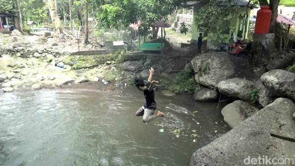 Di balik pepohonan tinggi ini, pengelola kawasan wisata Wai Batu, menyiapkan dua kolam renang. Masing-masing, untuk anak-anak dan dewasa, cocok menjadi tempat bagi traveler merelaksasi diri dari rutinitas kerja sehari-hari.