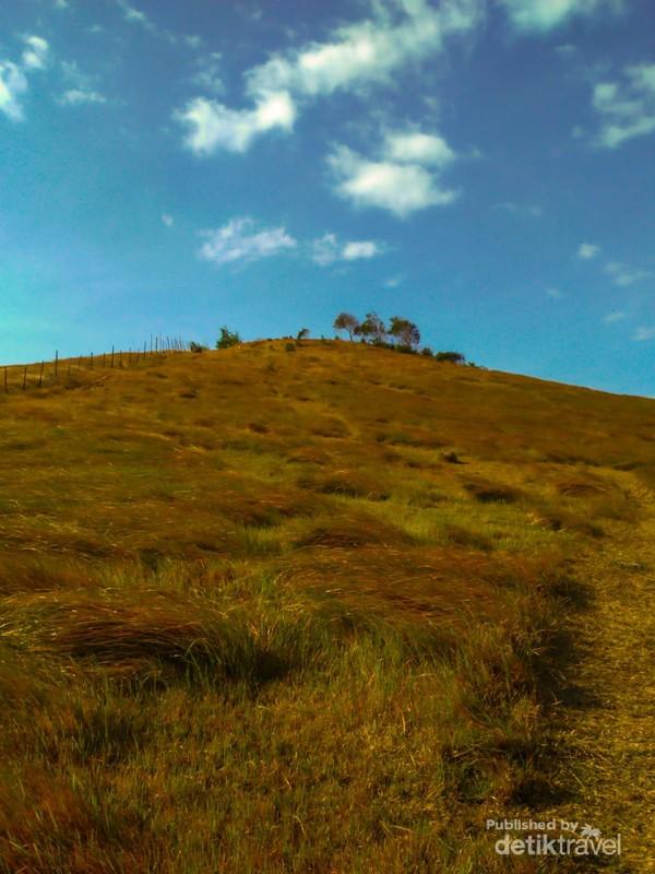 Pemandangan di Puncak Bukit Rimpi
