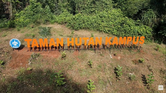 Taman hutan kampus