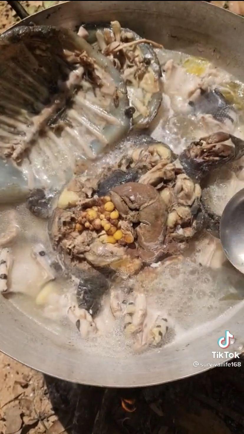 Video Masak Sup Daging Ular dan Kura-kura Ini Sukses Bikin Netizen Mual
