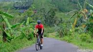 Jelajah Bukit Siregol Purbalingga, Hutan Amazonnya Indonesia