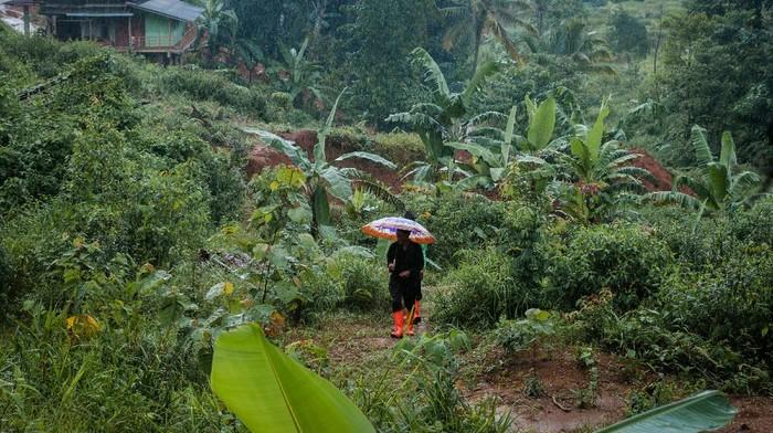 Ratusan kepala keluarga memilih tinggalkan Kampung Cigobang usai banjir bandang dan longsor melanda Lebak setahun yang lalu. Kampung itu kini jadi kampung mati.