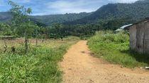 Video Menelusuri Jalur Tikus Lukas Enembe saat Naik Ojek ke Papua Nugini