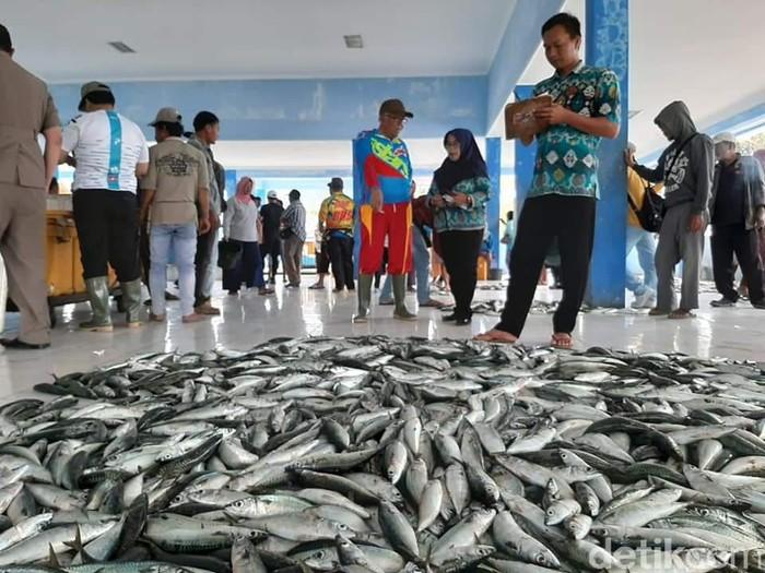 Pemkab Pangandaran membentuk tim terpada untuk meningkatkan retribusi hasil laut