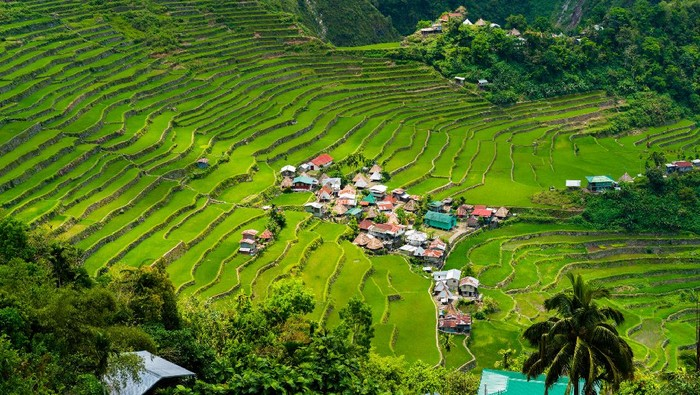 Banaue Rice Terraces di Filipina