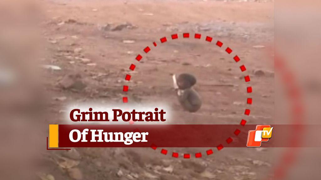 Miris! Kelaparan, Bocah Ini Jilati Piring Kotor dari Tempat Sampah