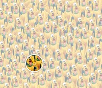 Fotoinet Uji Ketajaman Mata Dengan Mencari Karakter Kartun Tersembunyi