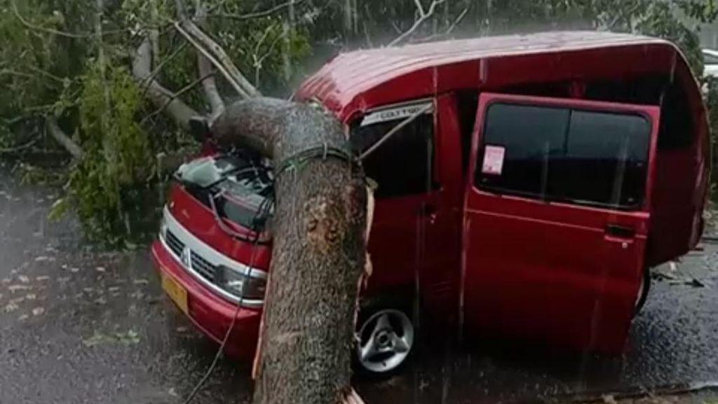 Angin Kencang Terjang Banjar, Mobil Tertimpa Pohon Tumbang
