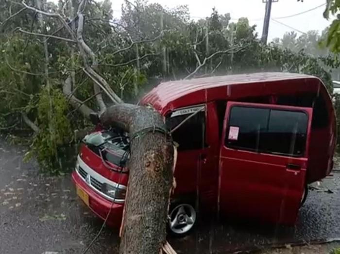 Pohon tumbang di Jalan Didi Kartasasmita, Kota Banjar, menimpa sebuah mobil angkutan umum, Sabtu (10/4/20121).