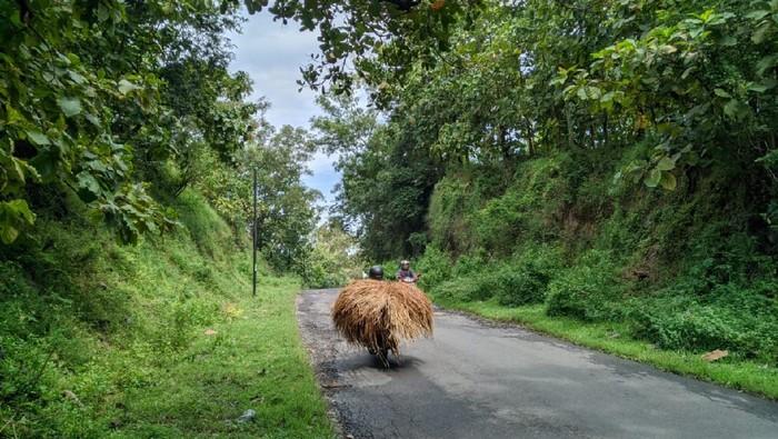 Mitos Gunung Pegat Ponorogo Pengantin Baru Tak Boleh Melintas