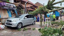 Hujan Disertai Angin Kencang di Bandung, Pohon Tumbang Timpa Mobil