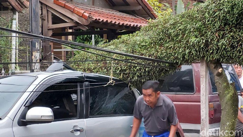 Kota Bandung Diterjang Angin Kencang, Pohon Tumbang Timpa Mobil
