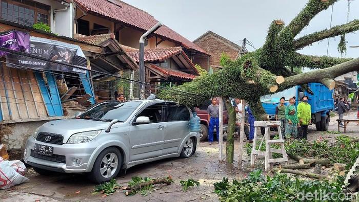 Hujan disertai angin kencang terjadi di Kota Bandung. Akibatnya sejumlah pohon dilaporkan tumbang menimpa mobil hingga kabel listrik.