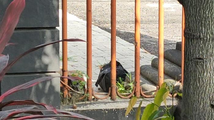 Tas Mencurigakan Ditemukan Dalam Halaman Gedung DPRD Kota Kediri