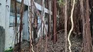 Dari Penjara Kalisosok, Pemkot Surabaya Diminta Gagas Badan Pengelolaan Cagar Budaya