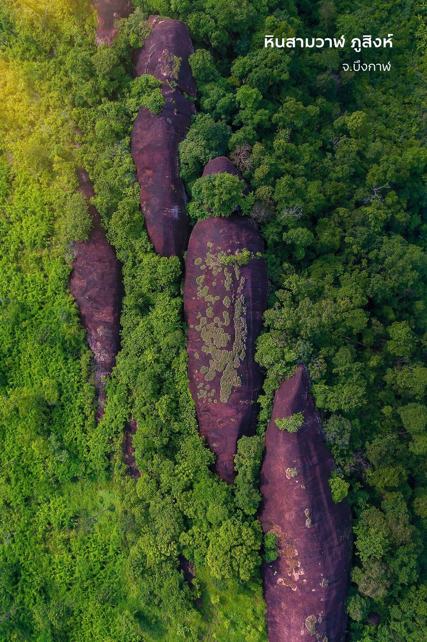 Three Whale Rock di Thailand