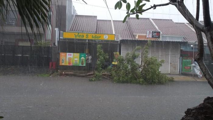 Pohon tumbang di Bekasi (Dok Marwan Pasangmata)