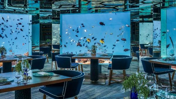 Buat wisatawan yang mau menyantap makanan sambil melihat keindahan bawah laut akan turun ke restoran SEA yang terletak 6 meter di bawah air. (Anantara Kihavah Villas)