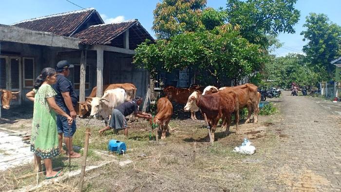 Banjir yang menerjang Kabupaten Madiun mencapai 21 desa di enam kecamatan. Ketinggian banjir yang mencapai antara 30 Cm hingga 2 meter membuat warga panik dan menyelamatkan harta benda termasuk hewan ternaknya