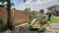 Lahan di Pekanbaru 12 Tahun Jadi Jalan Umum Sebelum Ditembok Pemilik