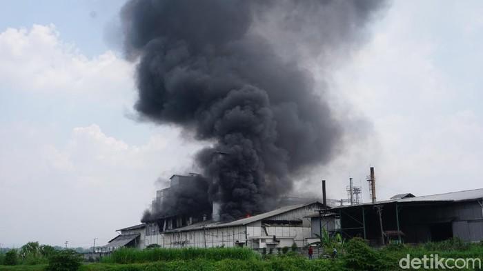 pabrik tepung terbakar