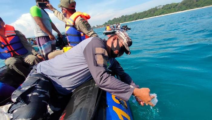Petugas gabungan melepasliarkan ribuan benih lobster di Pangandaran