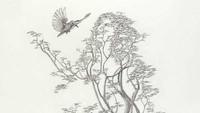 Tes Kepribadian: Gambar Wanita, Pohon, atau Burung yang Pertama Kamu Lihat?