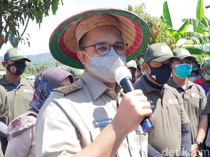 Gubernur DKI Jakarta Anies Baswedan panen raya di Cilacap, Jumat (16/4/2021).