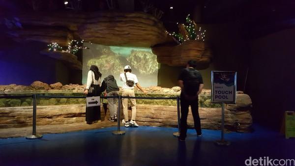 Traveler juga bisa merasakan pengalaman memberi makan secara langsung binturong, meerkat dan penguin lho.