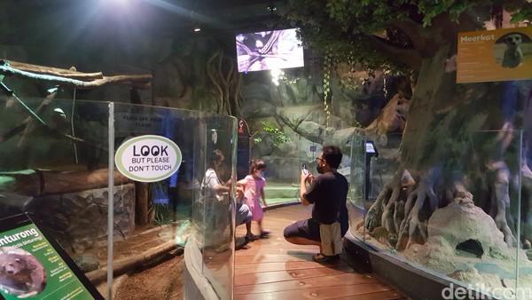 Jakarta Aquarium dan Safari (JAQS) menerapkan protokol kesehatan yang ketat untuk para pengunjung.
