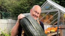Pensiun Jualan Daging, Kakek Ini Sukses Jadi Petani Sayuran Jumbo