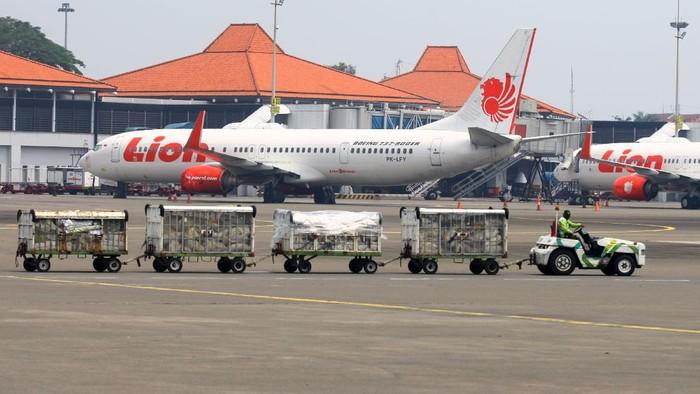 Pemerintah melarang mudik pada 6-17 Mei 2021. Indonesia Nastional Air Carriers Association (INACA) pun minta pemerintah bebaskan biaya parkir pesawat imbas larangan mudik 2021.