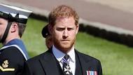 Bahasa Tubuh Pangeran Harry Menyiratkan Jijik dengan Masa Lalunya