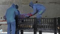 Horor Corona di India saat Kematian 2 Ribu Orang Sehari Jadi Rekor