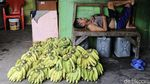 Lesunya Penjualan Pisang di Pasar Kebayoran Lama