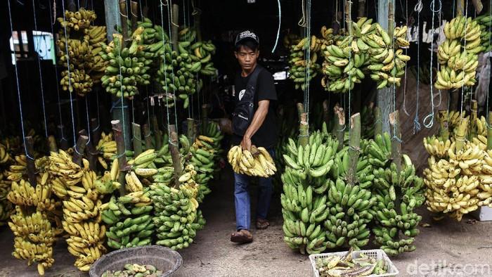 Sejumlah pedagang tampak menjajakan buah pisang miliknya di Pasar Pisang Kebayoran Lama, Jakarta Selatan, Selasa (20/4/2021). Sepinya para pembeli di Pasar Pisang ini membuat omset para pedagang turun diatas 50%. Salah seorang pedagang mengatakn, penyebabnya adalah karena banyaknya para pembeli mereka yang merupakan para pedagang lebih memilih pulang kampung lebih awal karena adanya larangan mudik oleh pemerintah.