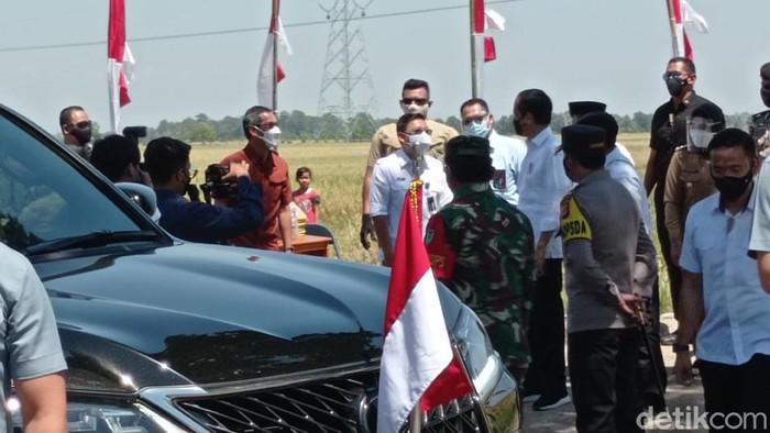 Presiden Jokowi saat meninjau panen raya di Kabupaten Indramayu